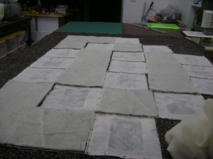 Sheila's quilt 2014 009