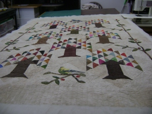 Quilts - Pat 2015 001