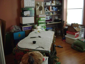 Cleaning and organizing 2015 052